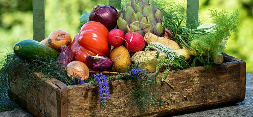 Buffet alles Gemüse